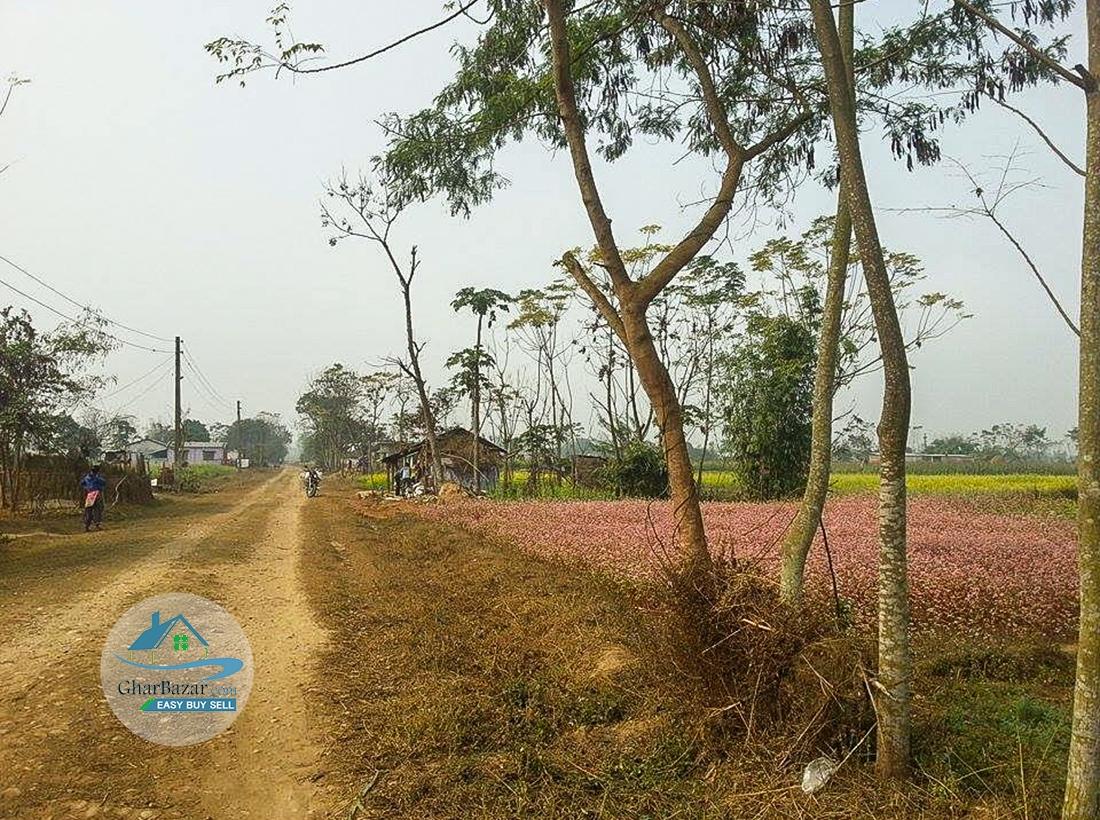 Land at Chitwan