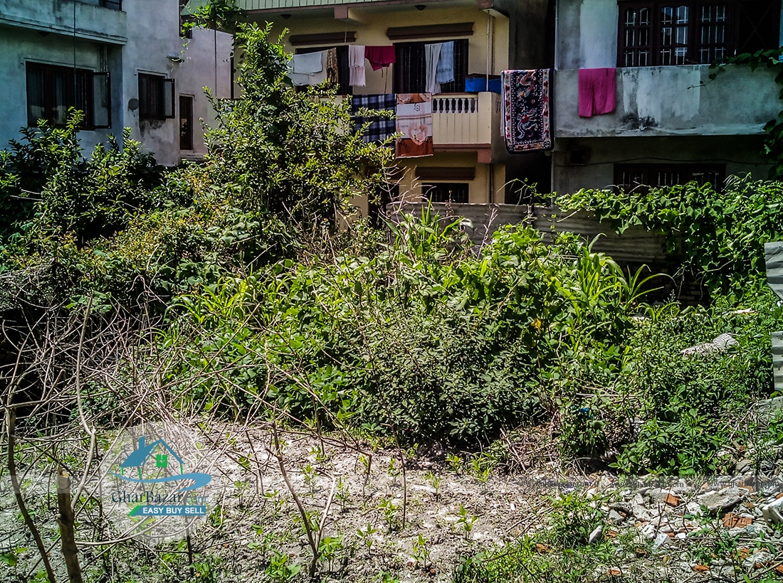 Land at Gongabu