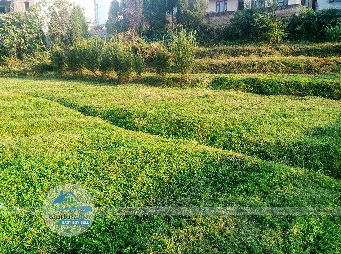 Land at Naya Thimi