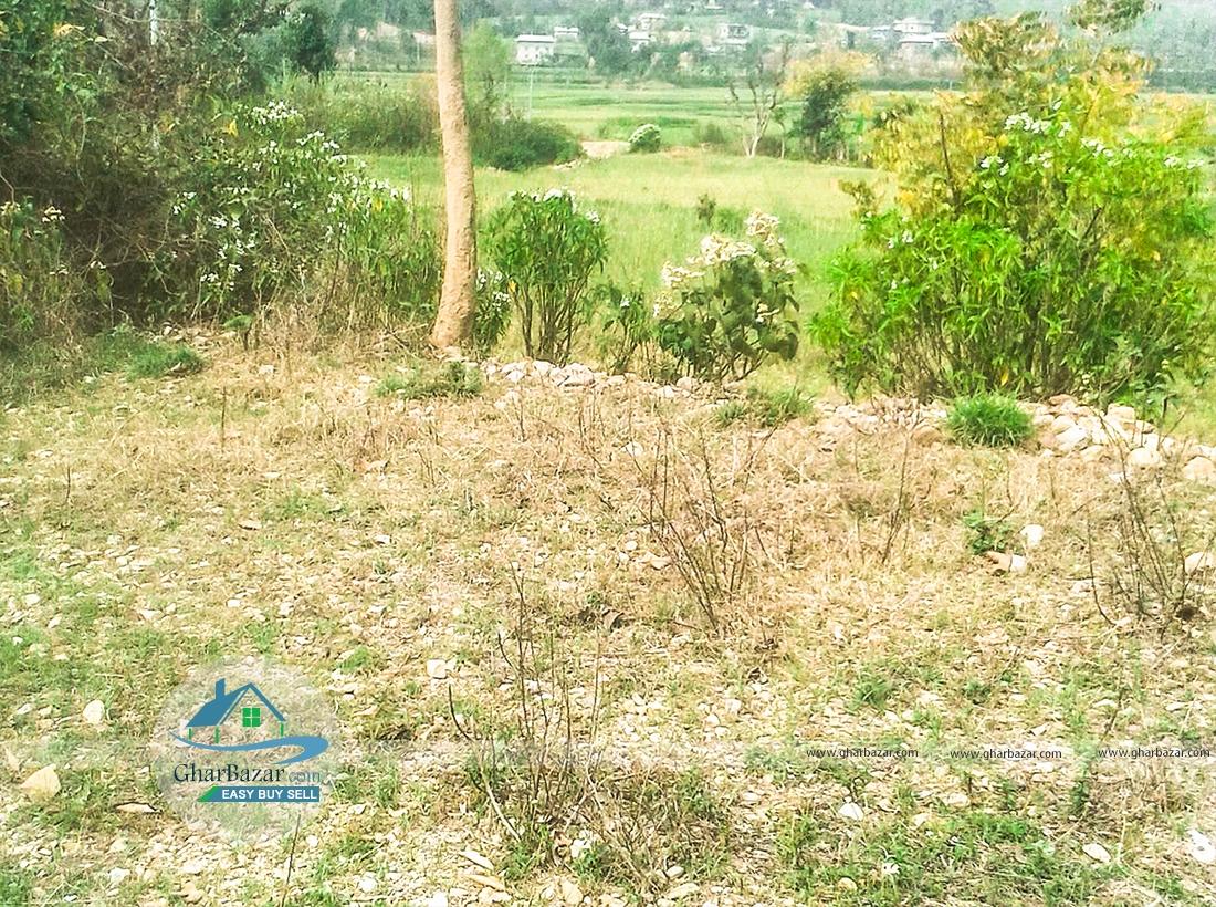 Land at Pyuthan