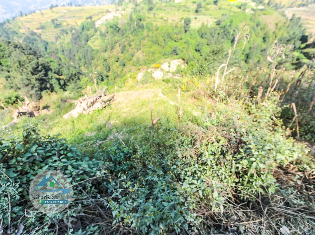 Land at Tinpiple