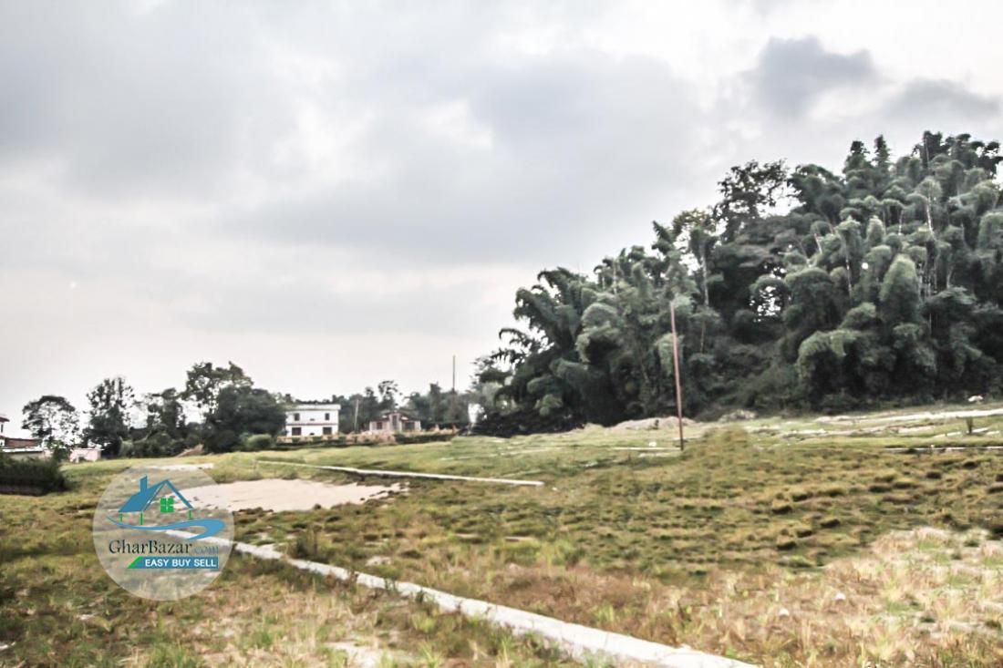 Plotted land at Mulpani