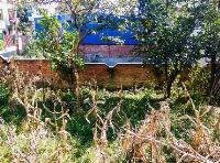 Land at Chauni