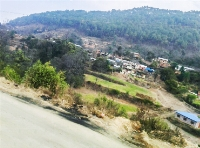 Land at Badikhel