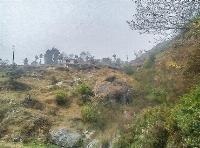 Land at  Basnet Pauwa, Kakani