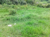 Land at Tallo Bhangal